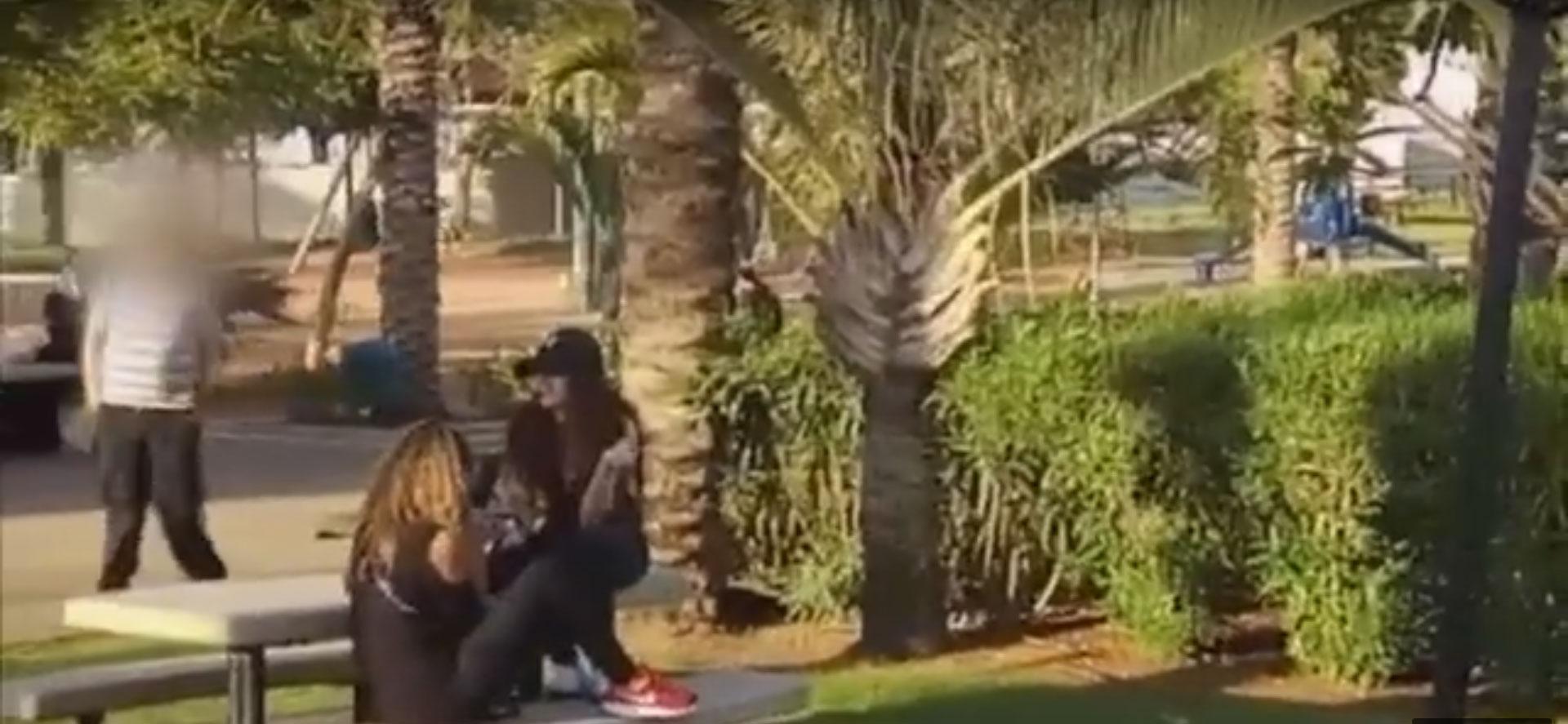 מתוך הסרטון ששחררה המשטרה מהפארק הגדול. צילום: דוברות המשטרה