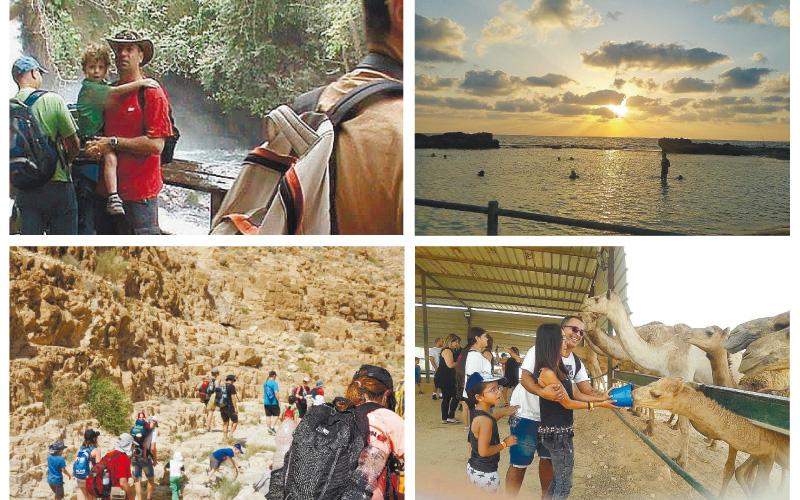 קולאז' המלצות. עין דיבשה והבניאס, ערד ונחל קינה,עכו מהחוף ועד השוק ,כפר תראבין ליד רהט