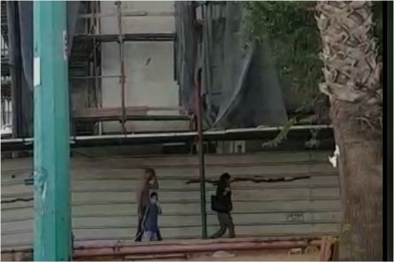 פועלים באתר הבנייה סמוך לבית הספר היסודי אמיר. באדיבות ההורים