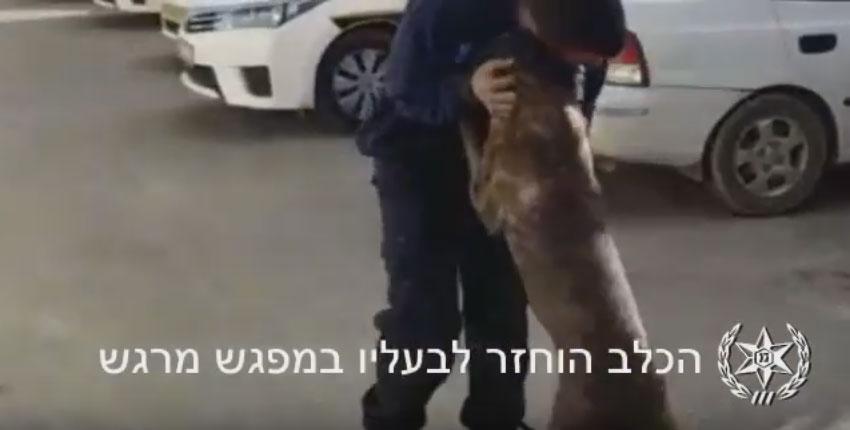 מתוך הסרטון. צילום משטרת ישראל