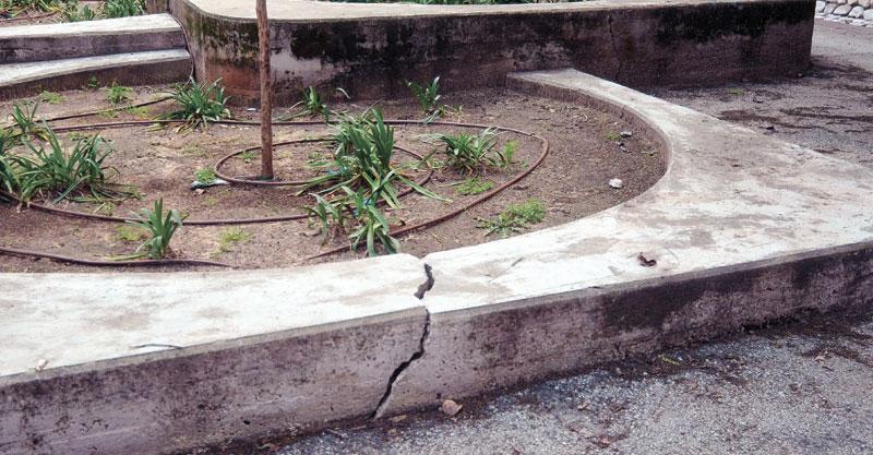 גן בירנבוים צילום זאב שטרן