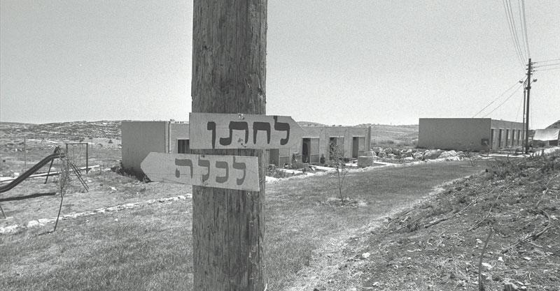 """צילום חנניה הרמן— לע""""מ"""
