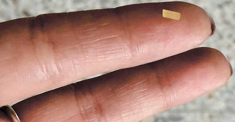 האצבע והספגטי צילום באדיבות מכבי שרותי בריאות