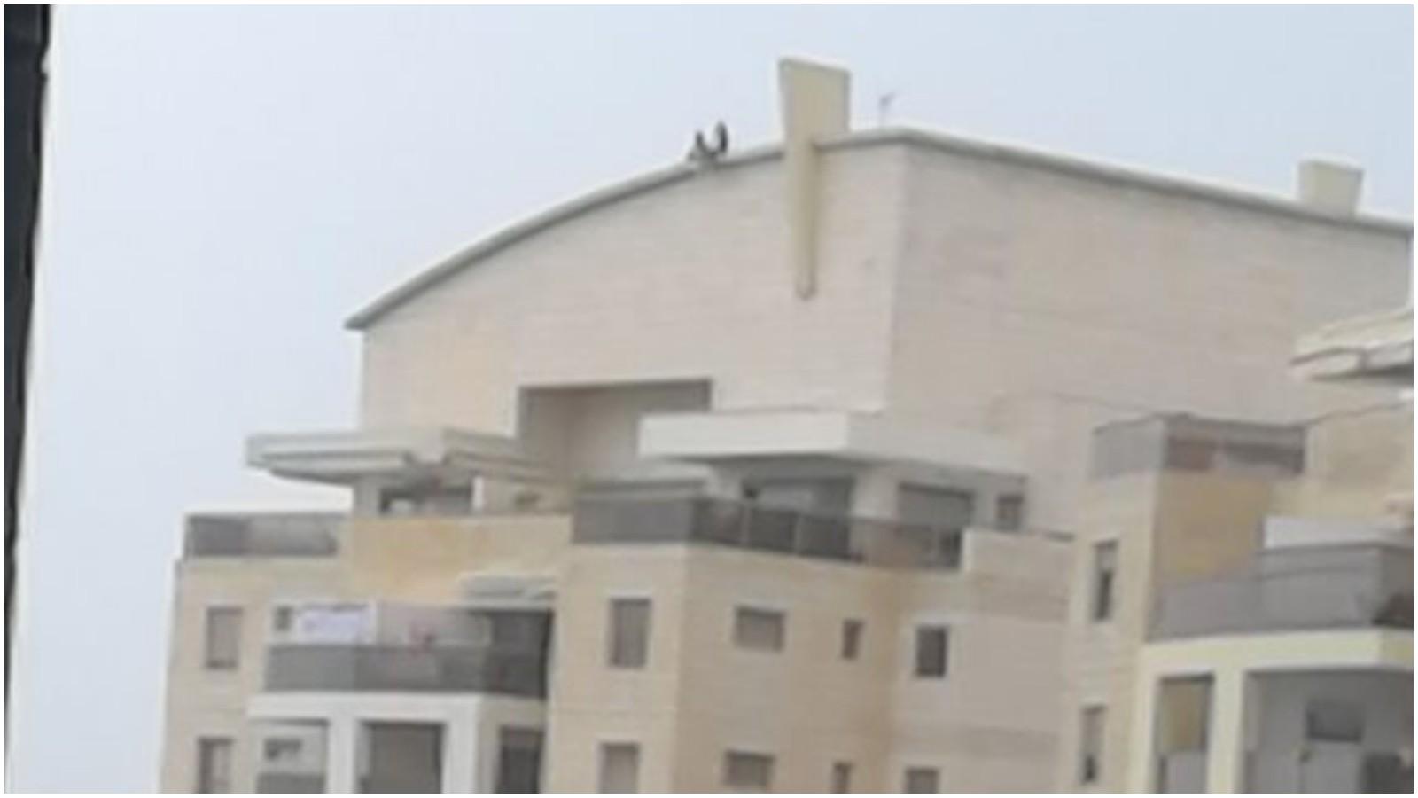 משה סנה 14, ילדים על הגג