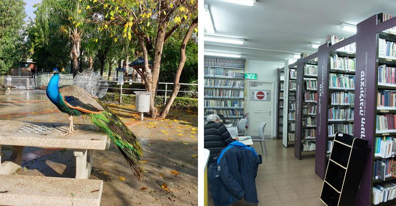 עיריית פתח תקוה מקדמת מרחבי למידה לסטודנטים. צילום עיריית פתח תקוה