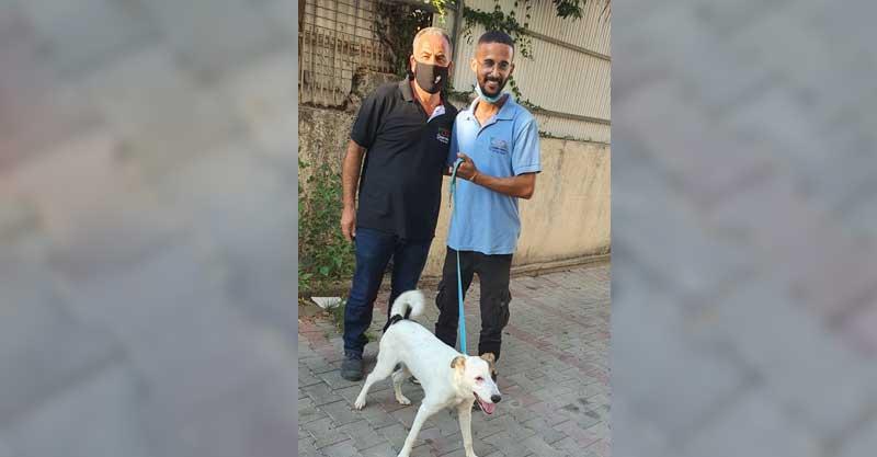 אנשי השרות הווטרינרי עם הכלבה שהיה חשד שעברה התעללות
